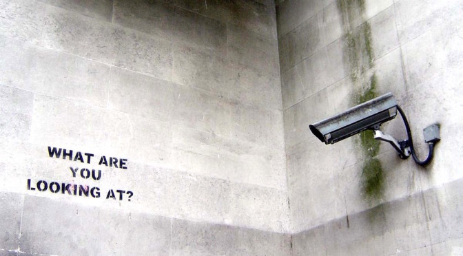 An Essay on Domestic Surveillance